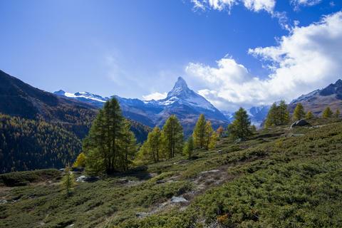 Matthorn and switzerland fall Foto