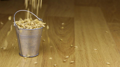 Fall into a bucket of barley grains and on wooden floor Footage