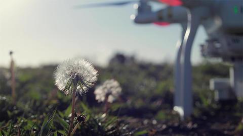Drone Takeoff Flower Power Footage