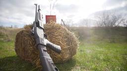 Shotgun with carton of cartridges on the hay Image