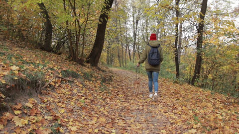 Trendy hipster girl walking the dog in autumn park Archivo