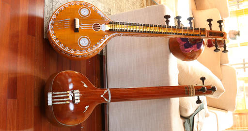 Indian Music instrument Veena Live Action