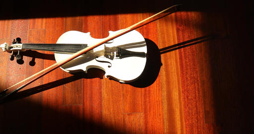 Violin dramatic lighting Live Action