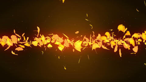 Autumn Leaves Falling on Yellow Background, Ginkgo Leaf, Loop Glitter Animation Animation