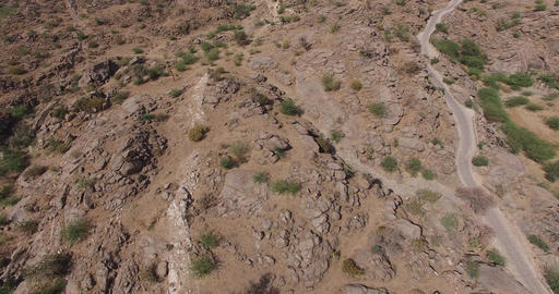 Flying Over Desert Landscape with Shrubs Live Action