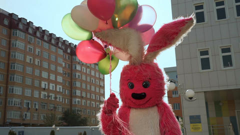 rabbit with baloons birthday 画像
