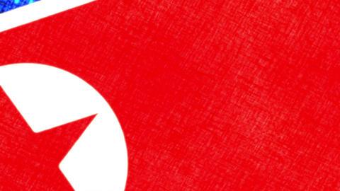 North Korea Grunge Flag Archivo