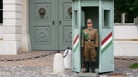 BUDAPEST - HUNGARY, AUGUST 2015: castle, palace guards soldiers Footage
