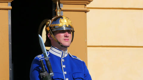 STOCKHOLM - SWEDEN, AUGUST 2015: Soldier Guarding Drottningholm Palace stock footage