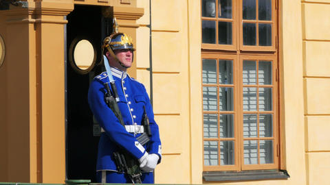 STOCKHOLM - SWEDEN, AUGUST 2015: soldier guarding drottningholm palace Footage