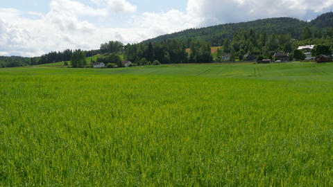 norwegian countryside village landscape with green farm view Footage
