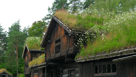 beautiful norwagian village houses with green grass rooftop, norway, 4k Footage