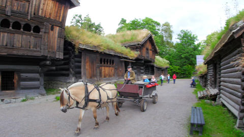 OSLO - NORWAY, AUGUST 2015: grass rooftop village horse cab Footage