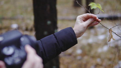 photographer traveler takes pictures of nature in the autumn forest. the first Footage