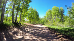 Driving along a dirt road in the rocky mountains Live Action