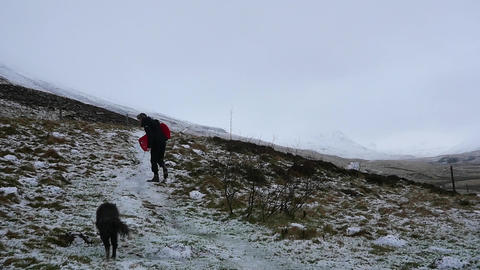 Man and His Dog Traverse Wintry Landscape Footage