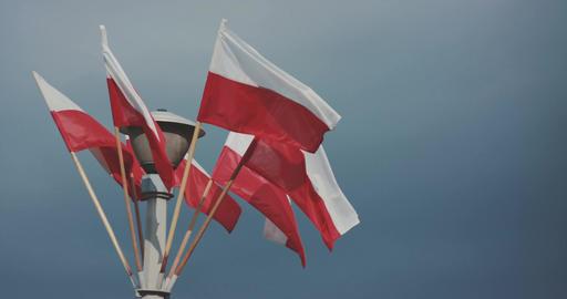 Polish Flags On Pole Against Sky Footage