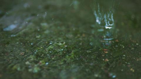 rain on water surface Footage