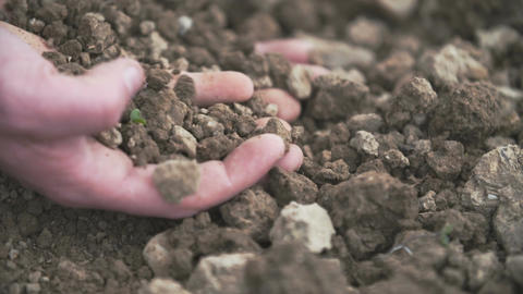 Interior close up shot of adult man hands holding soil Footage