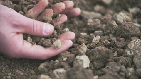 Interior close up shot of adult man hands holding soil Stock Video Footage