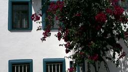 Turkey the Aegean Sea Turgutreis 058 white house wall and flowers Footage