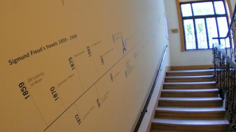 sigmund freud home museum stairs, shows his journeys, vienna Footage