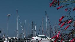 Turkey the Aegean Sea Turgutreis 004 sailing masts in marina Footage