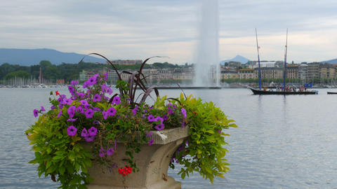 jet d'eau fountain and flowers at geneva lake, switzerland Footage