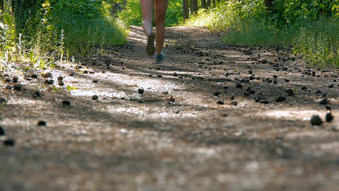 path in the woods, she runs in sneakers in the forest, sport activities Footage