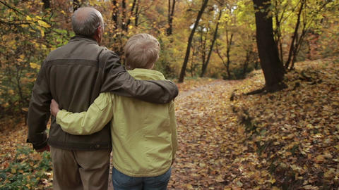 Elderly couple in love embracing in autumn Footage
