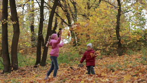 Siblings playing with maple leaves in autumn park Footage