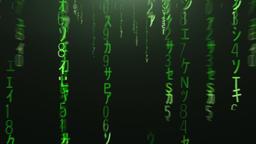 Flight through the falling green matrix code Animation