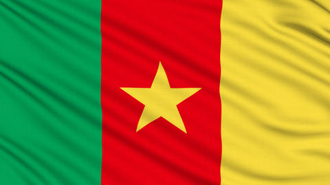 Cameroon Flag, with real structure of a fabric Animation