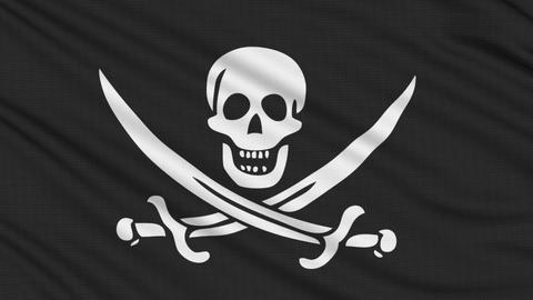 Pirate Flag, with real structure of a fabric Videos animados
