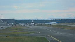 Cargo terminal at Frankfurt airport Footage