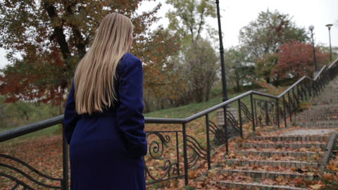 Stunning woman climbing staircase in autumn park Footage