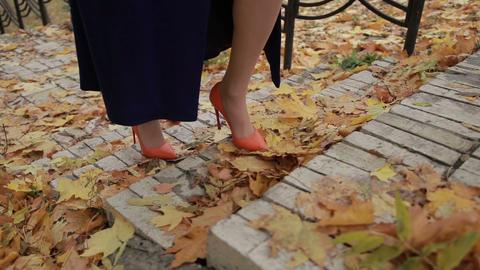 Elegant businesswoman climbing stairs in autumn Image