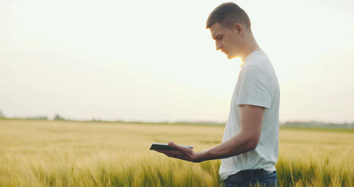 Agriculture - Close up of farmer using digital tablet Footage
