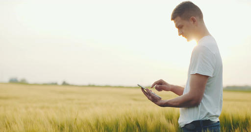 Agiculture. Modern farmer checking wheather on digital tablet ビデオ