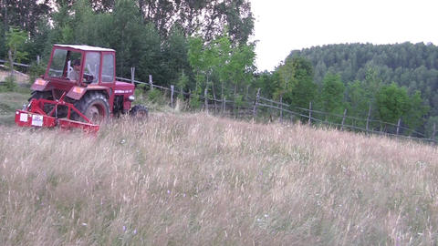 Tractor mowing sea grass grown on land behind the house. After it dries it will  Footage
