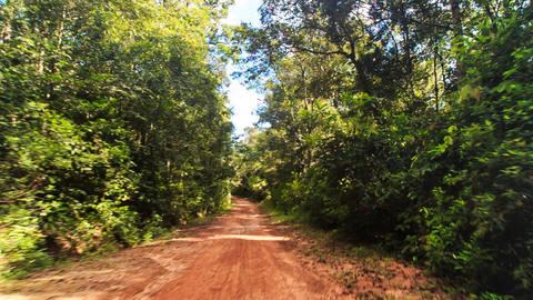 Moving along Shadow Sunny Ground Road in Tropic Forest Footage