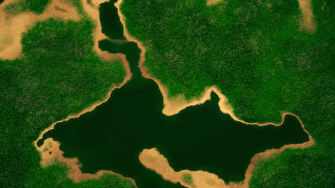 4K Satellite View of Wild Nature Area 3 stylized Animation