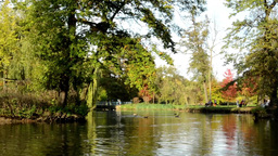 Autumn park (trees) - people relax - lake with ducks -people in background - ben Footage