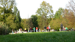 Autumn park (trees) - people walking - grass - family and friends - bench Footage