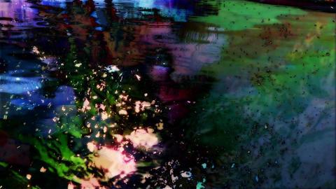 Dark tree reflection Footage