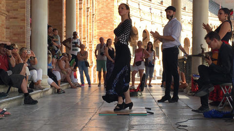 Group of flamenco dancers Bild