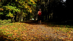 Autumn park (trees) - woman runs (sport) - leaves fallen - sunny Footage