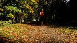 Autumn park (trees) - woman runs (sport) - leaves fallen - sunny Footage