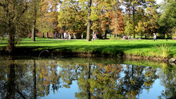 Autumn park (trees) - people relax - lake with reflection - family and friends - Footage