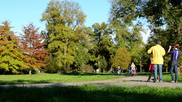 Autumn park (forest - trees) - people walking (family and friends) - pathway Footage